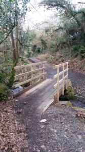 Bridge at Bearslake