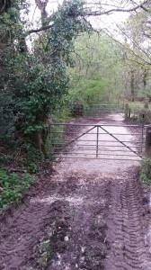 Fursdon Bridleway
