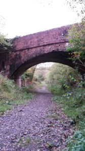 Bowerland Railway Bridge.