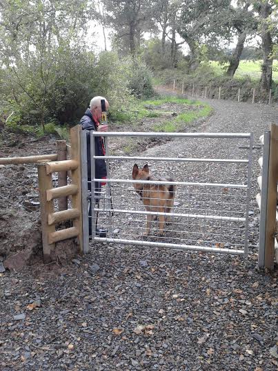 The Gate at Melbury After.