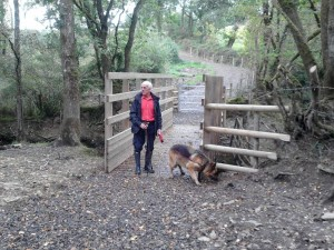 Frank and Ella enjoying new Bridge at Melbury Bridleway.