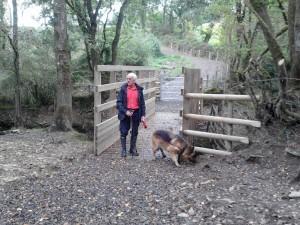 Frank and Ella enjoying new Bridge at Melbury Bridleway.