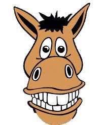 smiley horse